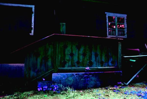 Walden, abandoned (4)